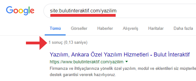 Google İndexlenme