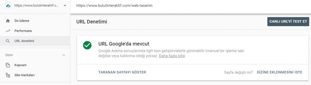 URL Denetim Aracı